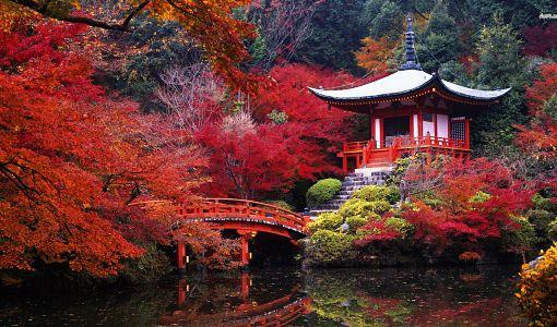 Japon_kyoto_510