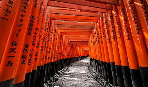 Japon_kyoto_tunel_510