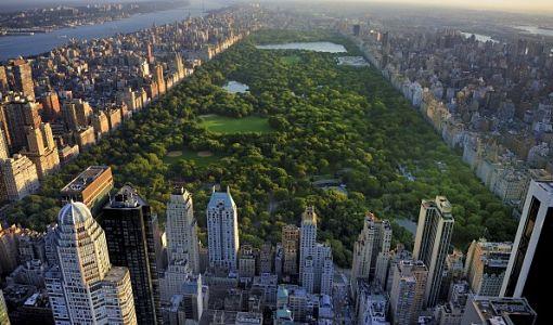 USA_New_york_central_park_510