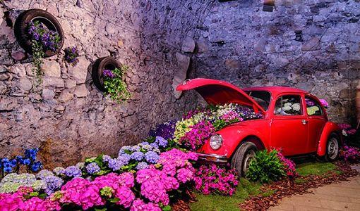 girona_flors_cotxe_510