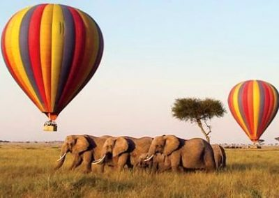 KENIA: EL SUEÑO DE ÁFRICA – Nairobi, Reserva Natural de Samburu, Parque Nacional Lago Nakuru y Safari en Globo sobre Masai Mara